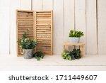 White Wood Backdrop Decoration. ...