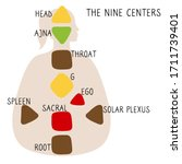 head  ajna  throat  ego  solar...   Shutterstock .eps vector #1711739401