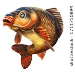 Common Carp Illustration. Common Carp Emblem. Isolated on white background.
