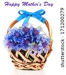 beautiful bouquet of... | Shutterstock . vector #171200279