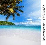 tropical heaven | Shutterstock . vector #171203645