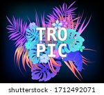summer tropic trendy neon... | Shutterstock .eps vector #1712492071