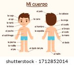 mi cuerpo  my body   human body ... | Shutterstock .eps vector #1712852014