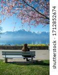 Montreux Promenade in Switzerland. Girl sitting on a bench in front of the Geneva lake, Alps mountains under the cherry blossom tree.
