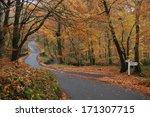 A Devon Lane In Autumn