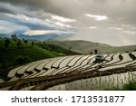Rice Fields Of Hill Tribes In...