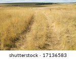 dirty way at steppe with a drying up yellow grass - stock photo