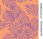 Hand Drawn Tropical Palm Leaves ...