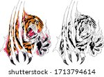 closeup claw of an evil tiger... | Shutterstock .eps vector #1713794614