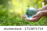Small photo of A man with a glass globe Concept day earth Save the world save environment The world is in the grass of the green bokeh background