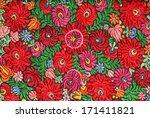 multicolor floral hand... | Shutterstock . vector #171411821