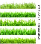 fresh green grass isolated on... | Shutterstock . vector #171448115