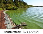 Lake With Algae In The Water...