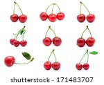 collection of beautiful red... | Shutterstock . vector #171483707