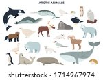bundle of funny wild polar... | Shutterstock .eps vector #1714967974