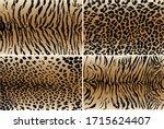vector illustration set of... | Shutterstock .eps vector #1715624407