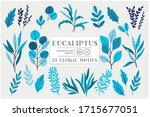 eucaliptus set isolated on... | Shutterstock .eps vector #1715677051