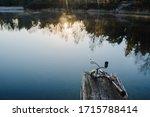 Fishing Rod  Spinning Reel On...