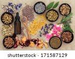 herbal naturopathic medicine...   Shutterstock . vector #171587129