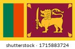 Closeup Flag Of Sri Lanka