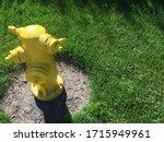 Yellow Fireplug On The Green...