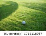 Golf Ball On Green Grass Sunset ...