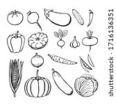 hand drawn vegetables... | Shutterstock .eps vector #1716136351