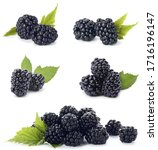 Set Of Ripe Blackberries On...