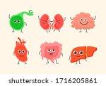 Medical Human Circulatory Organ ...