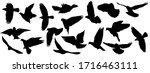 set of silhouettes of flying... | Shutterstock .eps vector #1716463111
