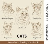 Hand Drawing Set Of A Cats...