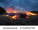 Evening Fire On A Field With...