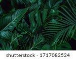 Background With Dark Green...