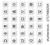 media player control buttons...