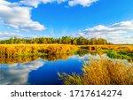 Nature rural pond water autumn...