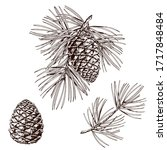 pine branches and cones. hand... | Shutterstock .eps vector #1717848484