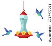 Hummingbird Bird Feeder....