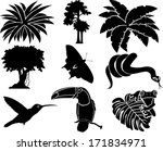 Vector Set Of Jungle Icons Wit...