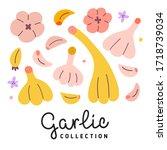 garlic collection  vector...   Shutterstock .eps vector #1718739034