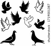Collection Of Black Dove...