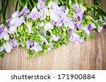 flowers background | Shutterstock . vector #171900884