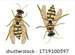 colored vector illustration in... | Shutterstock .eps vector #1719100597