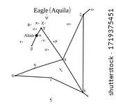 Eagle  Aquila  Star Group....