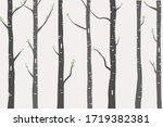 birch or aspen trees with green ... | Shutterstock .eps vector #1719382381