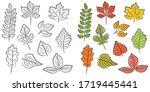 vector set of leaves of... | Shutterstock .eps vector #1719445441