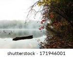 A Foggy Lake At Dawn.  Rose...