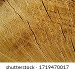 beautiful texture and...   Shutterstock . vector #1719470017