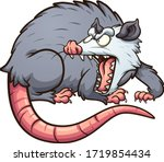 angry opossum looking back and... | Shutterstock .eps vector #1719854434