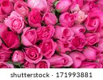 Stock photo pink roses for love background 171993881