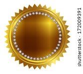 coin medal frame | Shutterstock .eps vector #172009391
